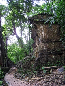 Temple of the Jaguar Ruins in Palenque Jungle